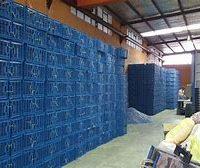 تولید انواع سبد پلاستیکی