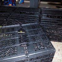فروش انواع سبد پلاستیکی میوه