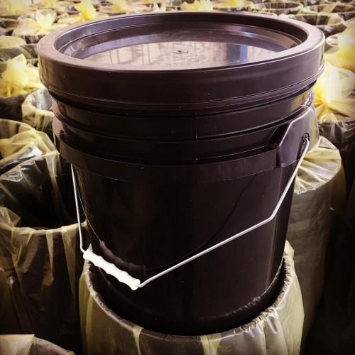 تولیدی سطل ۲۰ لیتری(۲۵ کیلویی)