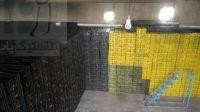 فروش سبد میوه پلاستیکی